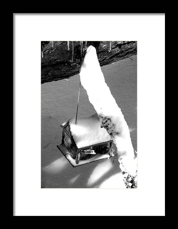Bird Framed Print featuring the photograph Winter Escape by Kerri Huven