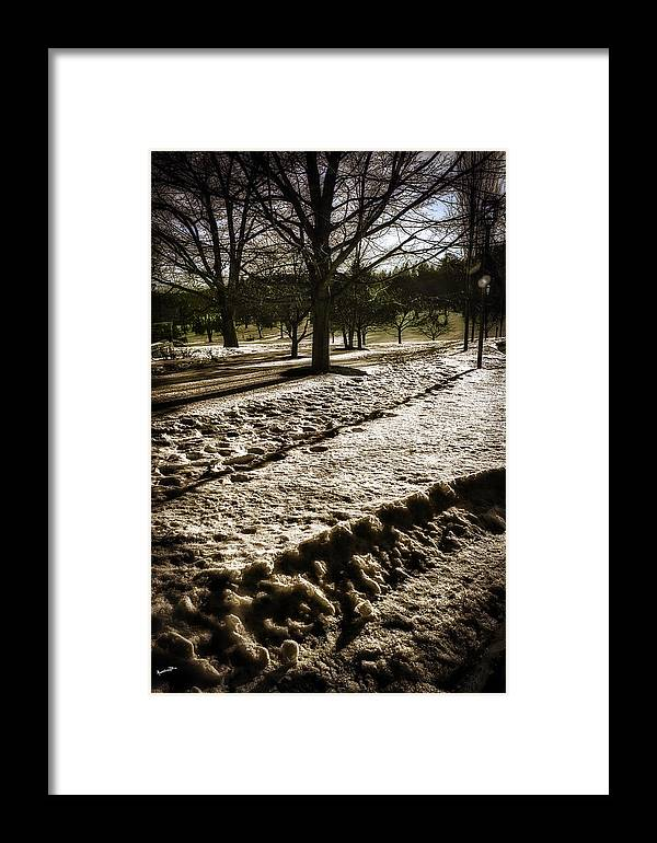 Winter Framed Print featuring the photograph Winter In The Berkshires by Madeline Ellis