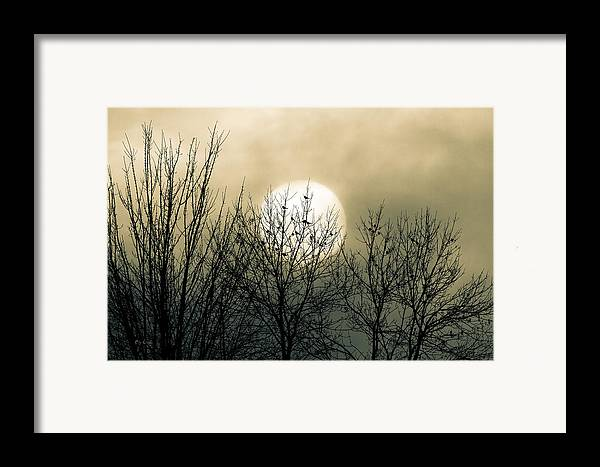 Winter Framed Print featuring the photograph Winter Into Spring by Bob Orsillo