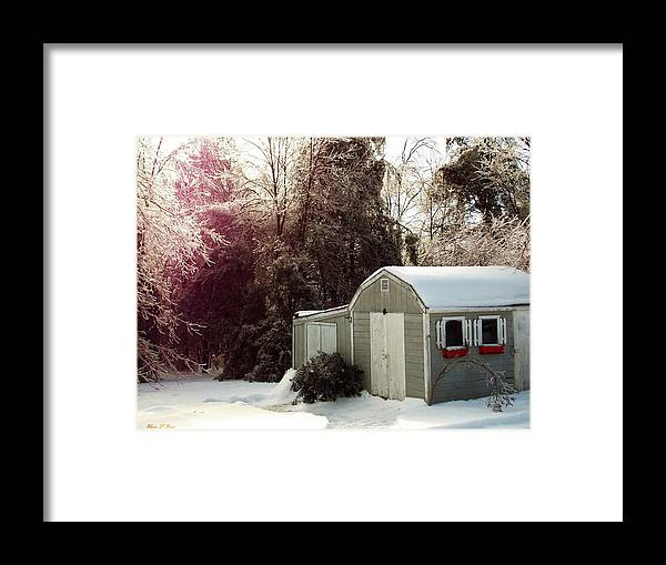 Winter Framed Print featuring the photograph Winter Morning by Shana Rowe Jackson