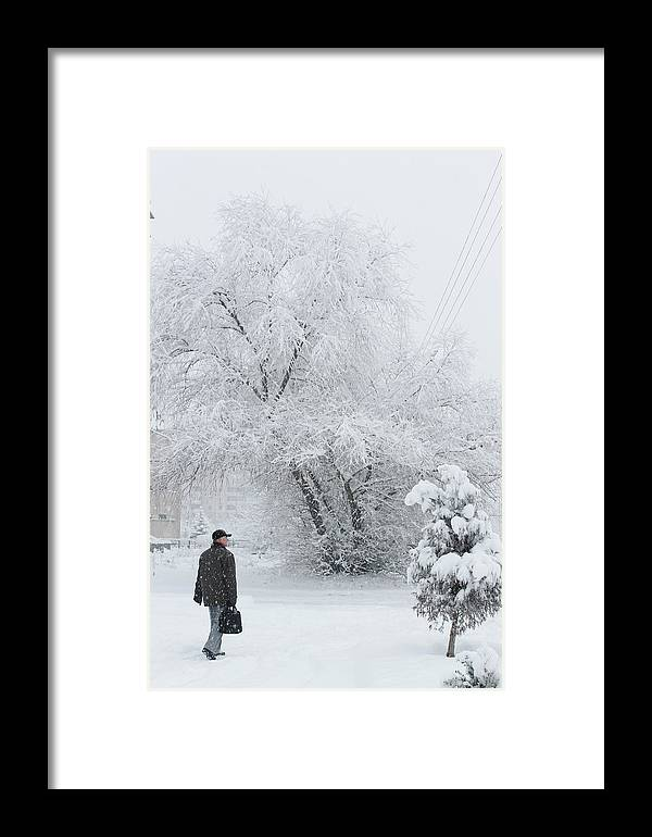 Winter Framed Print featuring the photograph Winter by Pavlo Kuzyk