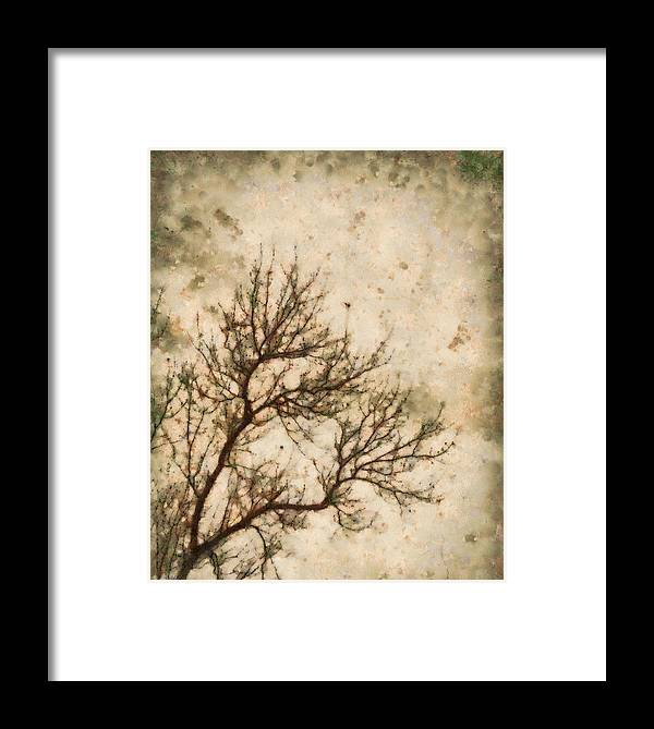 Winter Solitude Framed Print featuring the painting Winter Solitude by Dan Sproul