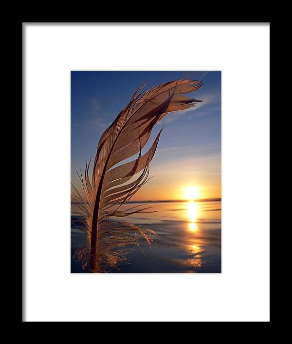 Ocean Framed Print featuring the photograph Winter Solstice 2011 by Pamela Patch
