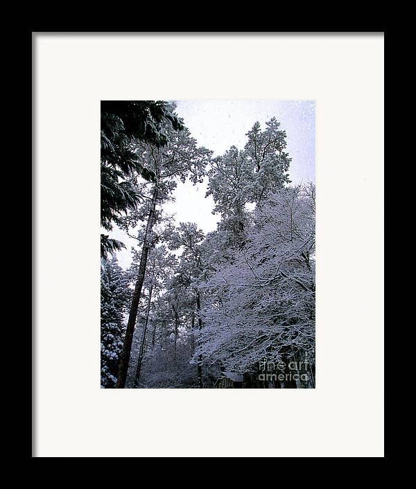 Winter Framed Print featuring the photograph Winter Surprise by Silvie Kendall