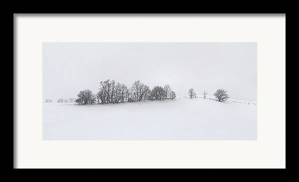 Winter Framed Print featuring the photograph Winter Tree Line In Indiana by Julie Dant