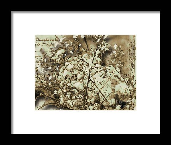 Framed Print featuring the mixed media Winter by Yanni Theodorou