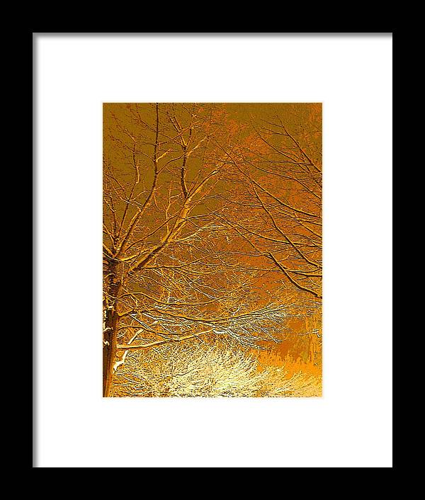 Winter Framed Print featuring the photograph Winters Touch 2 by Nicki Bennett