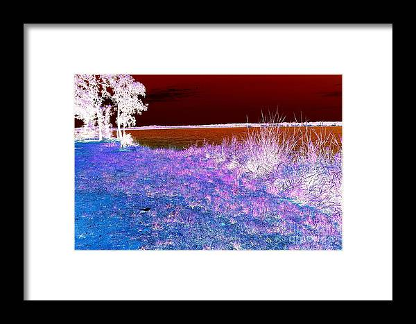 Clear Creek Lake Framed Print featuring the photograph Wintery Lake by Mickey Harkins