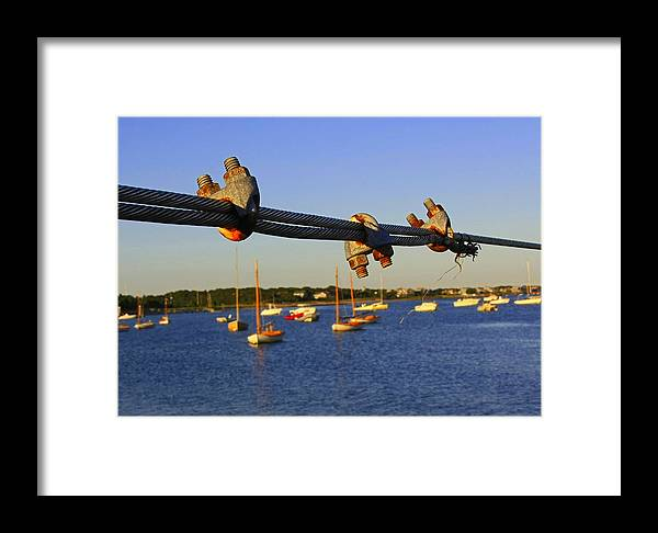Cape Cod Framed Print featuring the photograph Wire Rope Clips by David DeCenzo