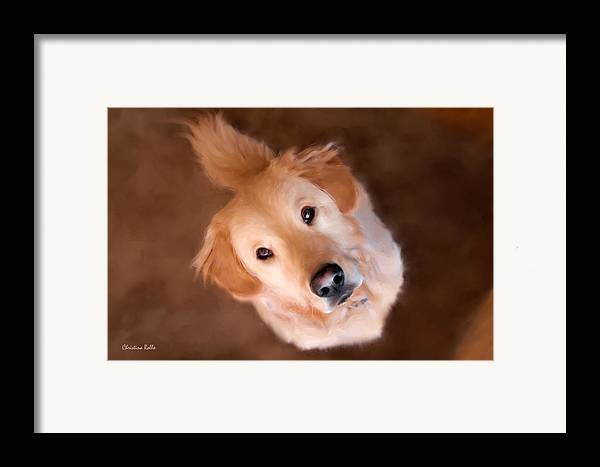 Golden Retriever Framed Print featuring the painting Wishful Thinking by Christina Rollo