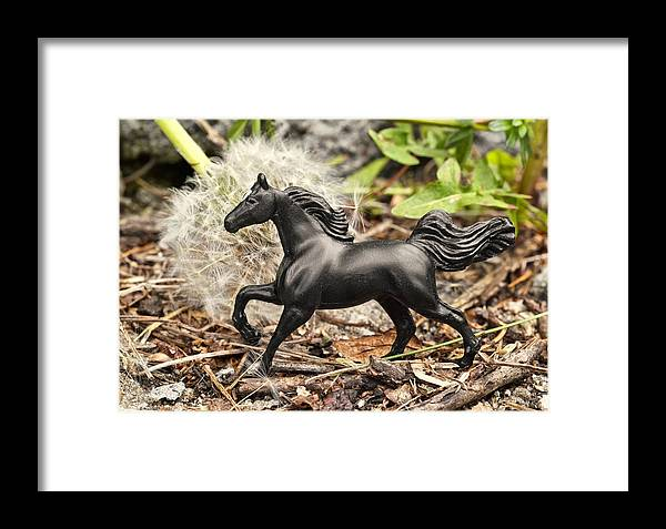 Horse Framed Print featuring the photograph Wishing Horse by Jeff Gettis