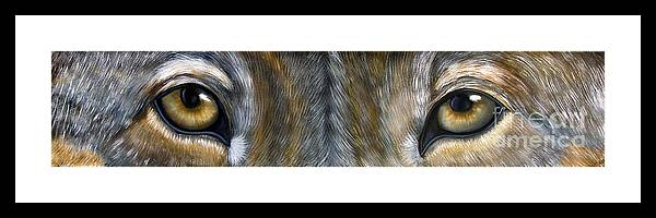 Wolf Framed Print featuring the painting Wolf Eyes by Darlene Green