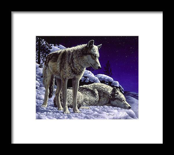 Wolf Framed Print featuring the painting Wolf Painting - Night Watch by Crista Forest