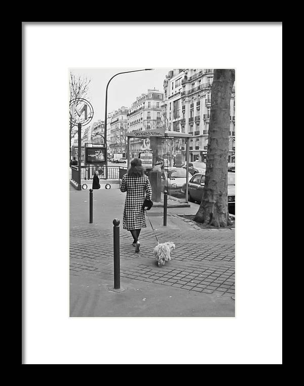 Paris Framed Print featuring the photograph Woman In Paris Walking Dog by Matthew Bamberg