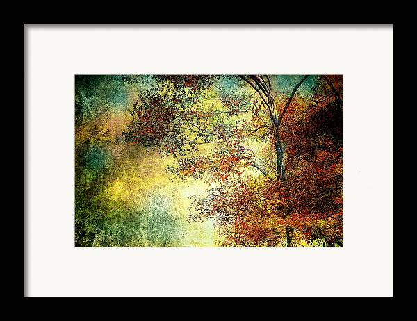 Landscape Framed Print featuring the photograph Wondering by Bob Orsillo
