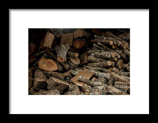 Wood Logs Framed Print featuring the photograph Wood Logs by Mina Isaac