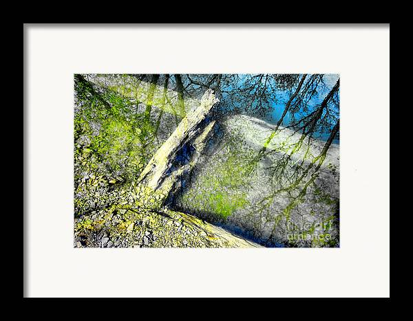 Abstract Framed Print featuring the photograph Wood Reflections by Olivier Le Queinec
