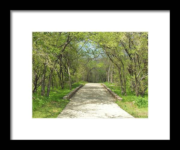 Paths Framed Print featuring the photograph Walking In The Park by Donna Wilson