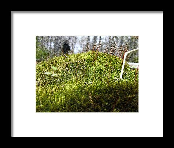 Nature Framed Print featuring the photograph Woodland 5 by Rhonda Barrett