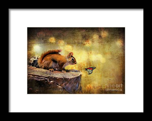 Wildlife Framed Print featuring the photograph Woodland Wonder by Lois Bryan