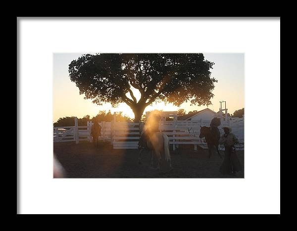 George Ranch Framed Print featuring the photograph Working The Ranch by Matt Johnson