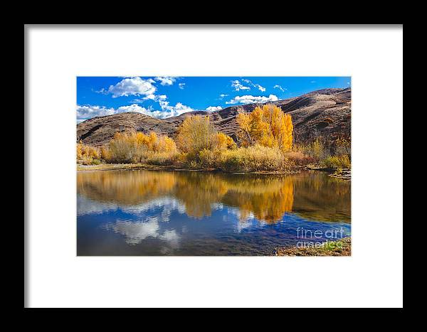 Yellow Framed Print featuring the photograph Yellow Fall Reflections by Robert Bales