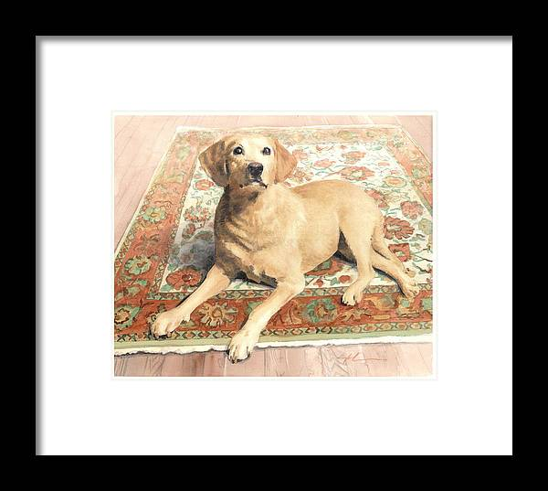Miketheuer.com Yellow Lab On A Rug Watercolor Portrait Framed Print featuring the drawing Yellow Lab On A Rug Watercolor Portrait by Mike Theuer