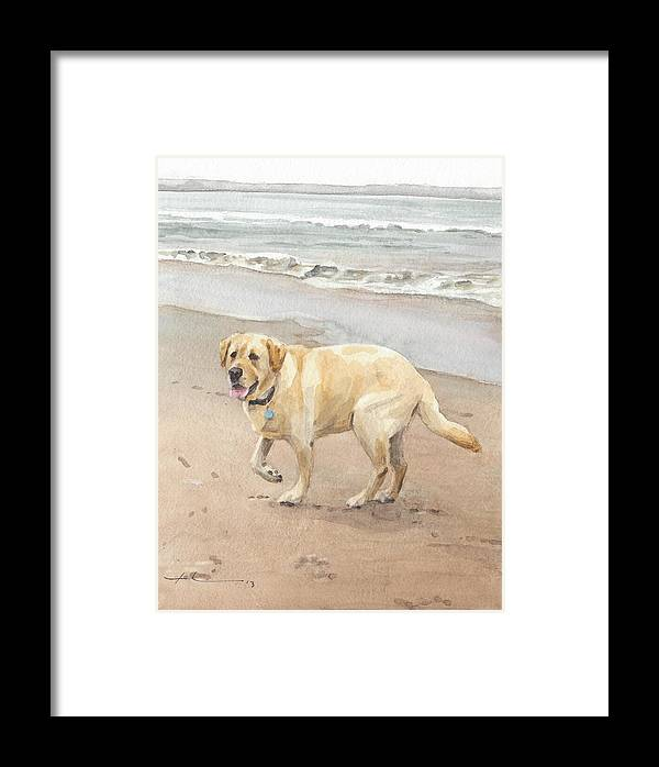 Www.miketheuer.com Yellow Lab On Beach Watercolor Portrait Framed Print featuring the drawing Yellow Lab On Beach Watercolor Portrait by Mike Theuer