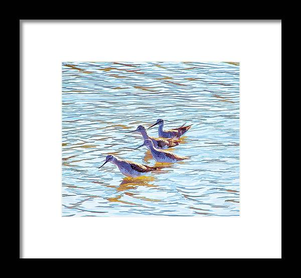 Yellow Legs Framed Print featuring the photograph Yellow Legs Quartet Photo Art by Constantine Gregory