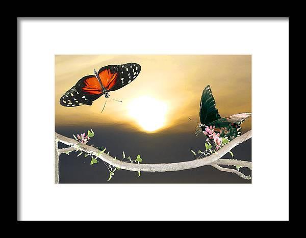 Sun Framed Print featuring the digital art Yellow Sun by Tina Lynch