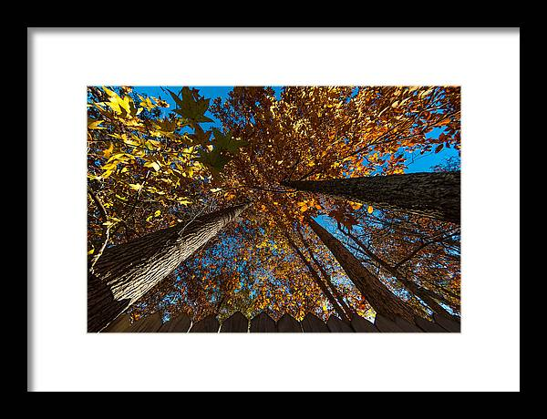 Autumn Framed Print featuring the photograph Yonder Sky by Gene Hilton