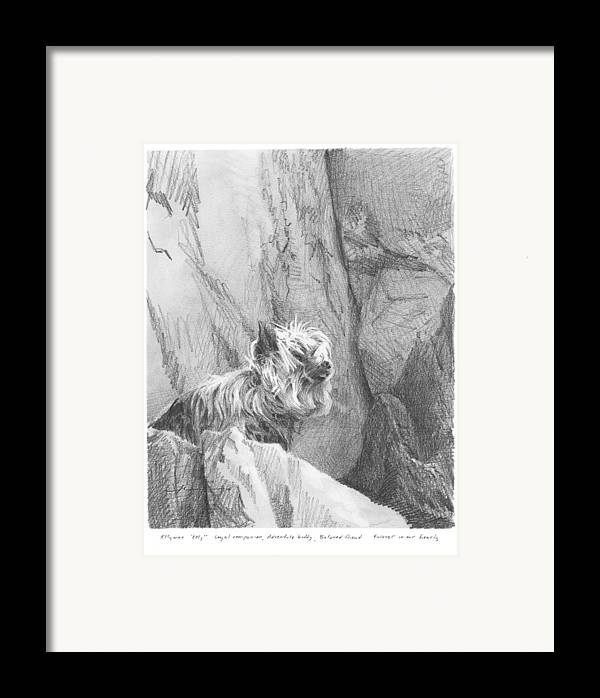 <a Href=http://miketheuer.com Target =_blank>www.miketheuer.com</a> Yorkie Dog On A Cliff Pencil Portrait Framed Print featuring the drawing Yorkie Dog On A Cliff Pencil Portrait by Mike Theuer