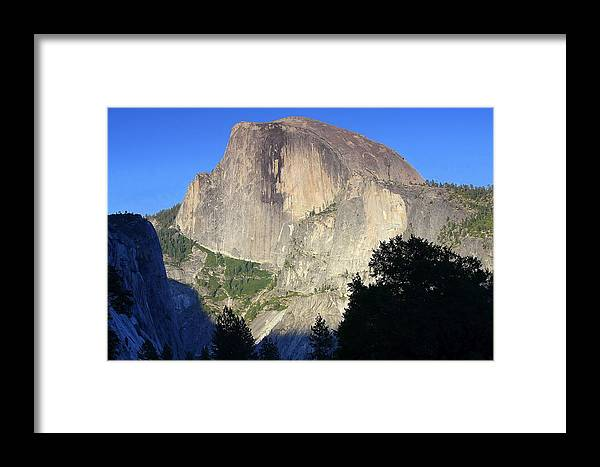 Halfdome Framed Print featuring the photograph Yosemite Half Dome With Cottonwood Trees by Anne Barkley