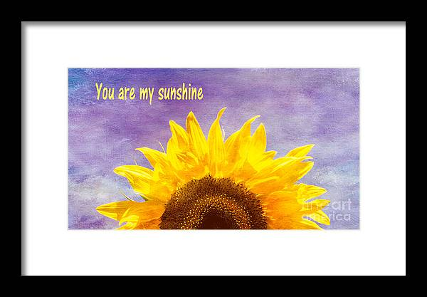 Sunflower Framed Print featuring the photograph You Are My Sunshine by Arlene Carmel