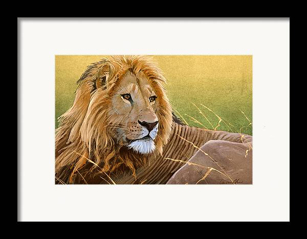 Lion Framed Print featuring the digital art Young Lion by Aaron Blaise