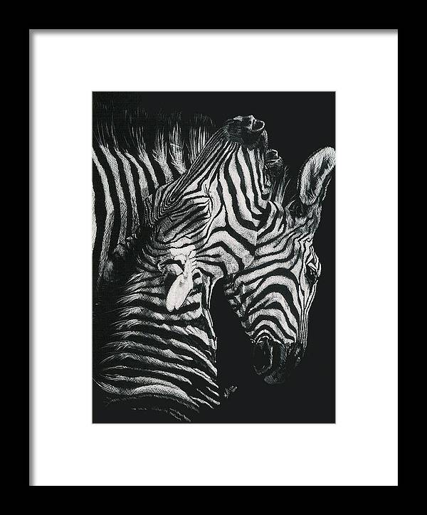 Art Framed Print featuring the drawing Youngbloods by Barbara Keith