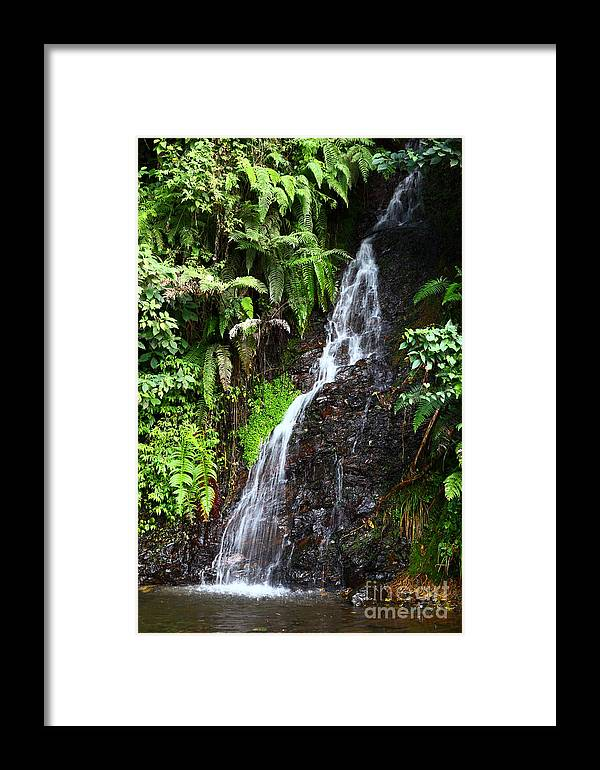 Waterfall Framed Print featuring the photograph Yungas Waterfall by James Brunker