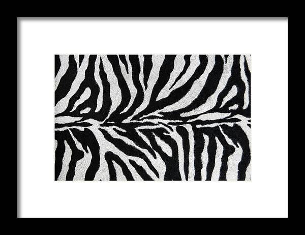 Animal Skin Framed Print featuring the photograph Zebra Textile Background by Narvikk