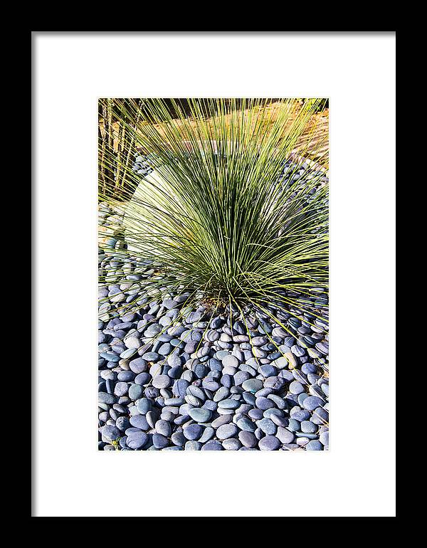 California Framed Print featuring the photograph Zen Landscape by Gerry Fortuna