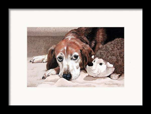 Dog Framed Print featuring the painting Zeppy And Lovey by Sandra Chase