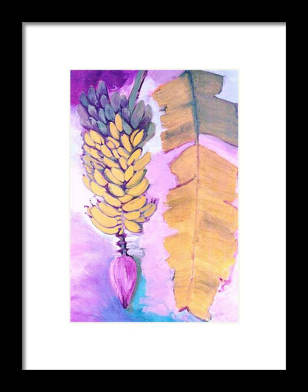 Nature Painting Framed Print featuring the painting   Florida Apple Bananas - 1 by Trudy Brodkin Storace