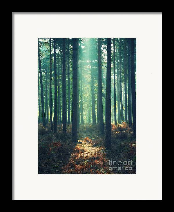 Rayon Vert Framed Print featuring the photograph The Green Ray by Paul Grand