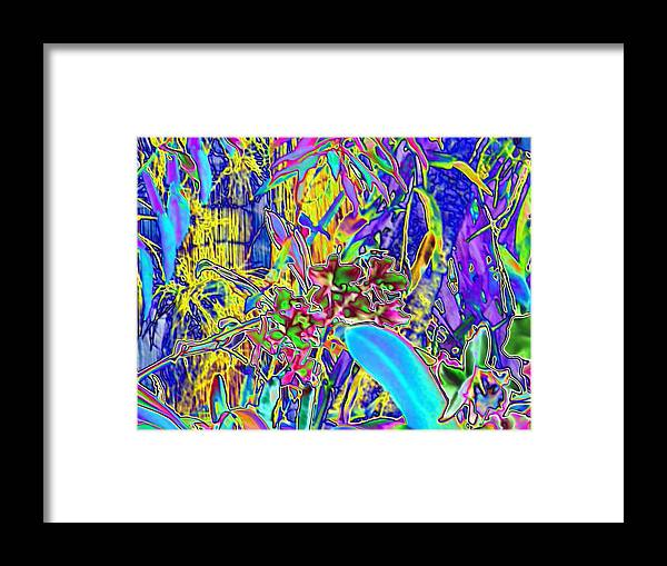 Digital Art Framed Print featuring the photograph 002a Colorful Orchards by Carol McKenzie