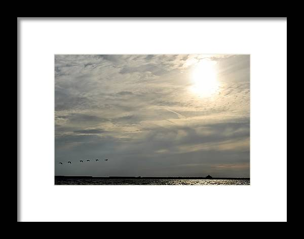 Framed Print featuring the photograph 007 When Feeling Down Pick Your Head Up To The Skies Series by Michael Frank Jr