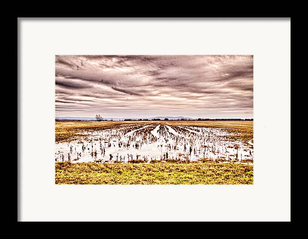 Sky Framed Print featuring the photograph 0704-8703 Winter Clouds At Holla Bend Wildlife Refuge by Randy Forrester
