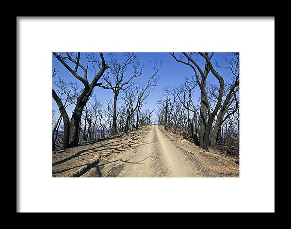 Photography Framed Print featuring the photograph A Dirt Road Runs Along A Mountain Top by Jason Edwards