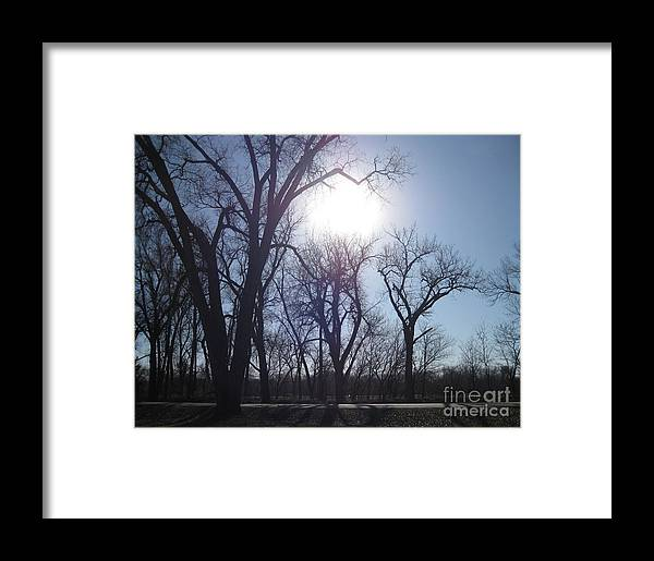 Framed Print featuring the photograph Autumn Afternoon Sun by Paula Cork