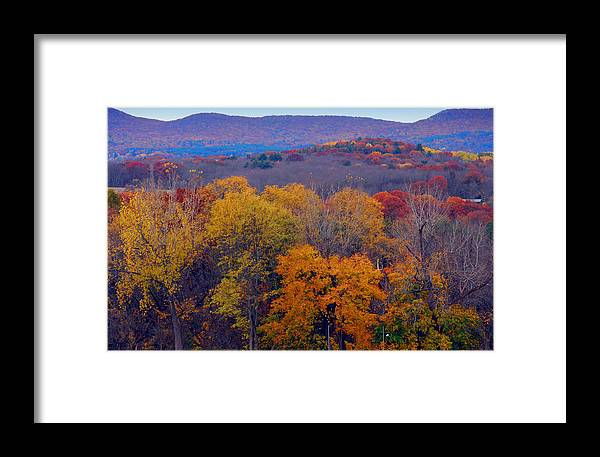 Autumn Framed Print featuring the photograph Autumn Palette by Marcia Mello