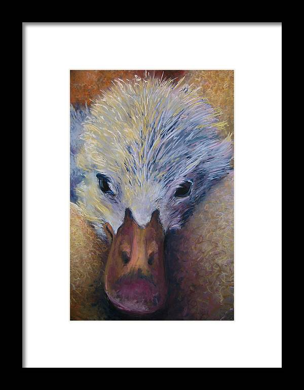 Baby Bird Framed Print featuring the pastel Baby Duck by Barbara Richert