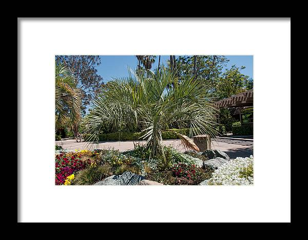 Balboa Park Framed Print featuring the digital art Balboa Park San Diego by Carol Ailles